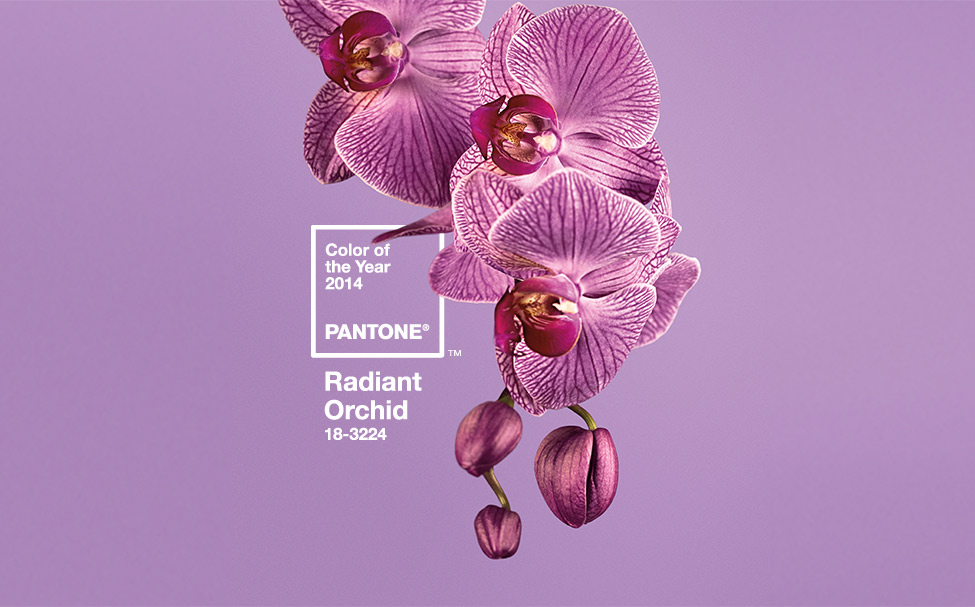 Radiant Orchid, Color of the year 2014